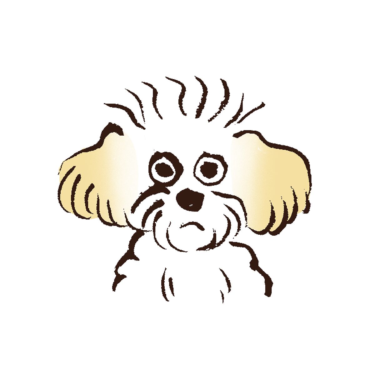 Hund: Wilma