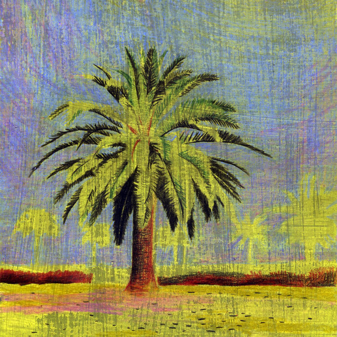 Datteln: palm tree