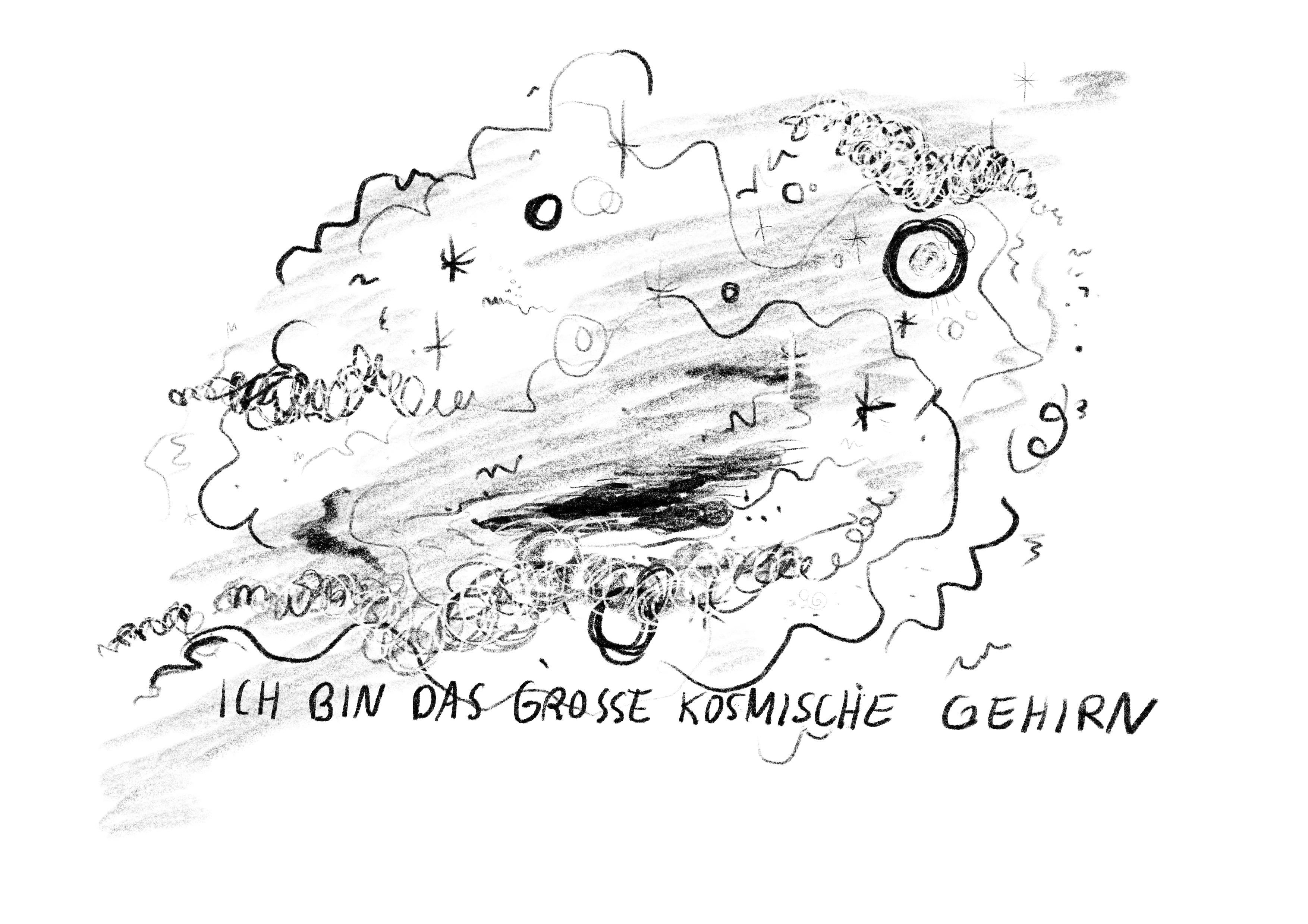 Das große kosmische Gehirn